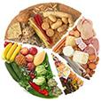 Voedingsschema.nl